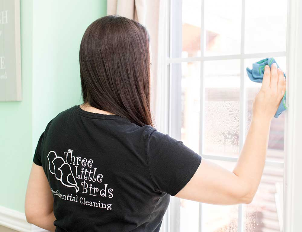 3 Best Ways to Avoid Window Streaks | Three Little Birds Residential Cleaning is a house cleaning company specializing in detailed cleans & exceptional service, all while honouring our commitment to integrity, family values & joy. Servicing Hamilton & Surrounding Areas,Hamilton, Ancaster, Caledonia, Burlington, Stoney Creek, Grimsby, Caledonia, Binbrook, Flamborough, Waterdown, Dundas, and Carlisle.